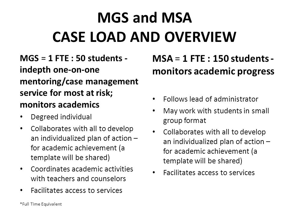 MGS and MSA CASE LOAD AND OVERVIEW