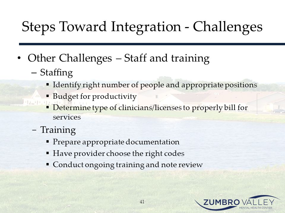 Steps Toward Integration - Challenges