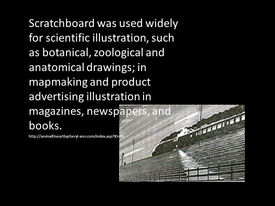Scratchboard was used widely for scientific illustration, such as botanical, zoological and anatomical drawings; in mapmaking and product advertising illustration in magazines, newspapers, and books.