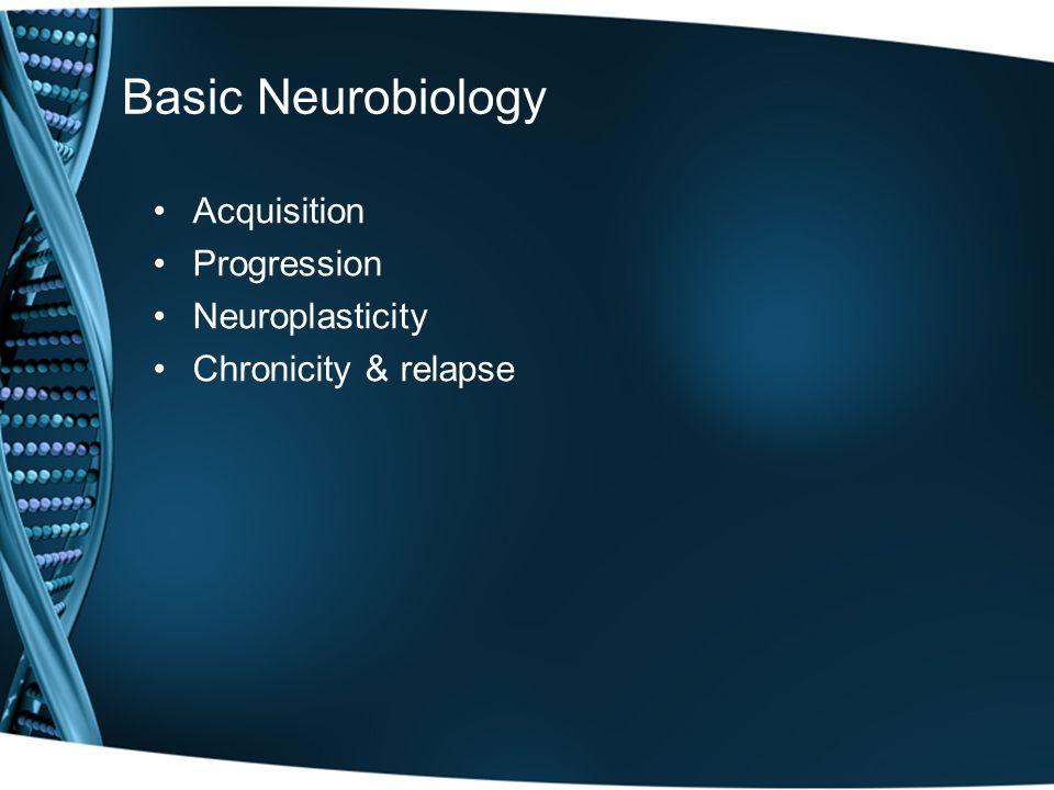 Basic Neurobiology Acquisition Progression Neuroplasticity