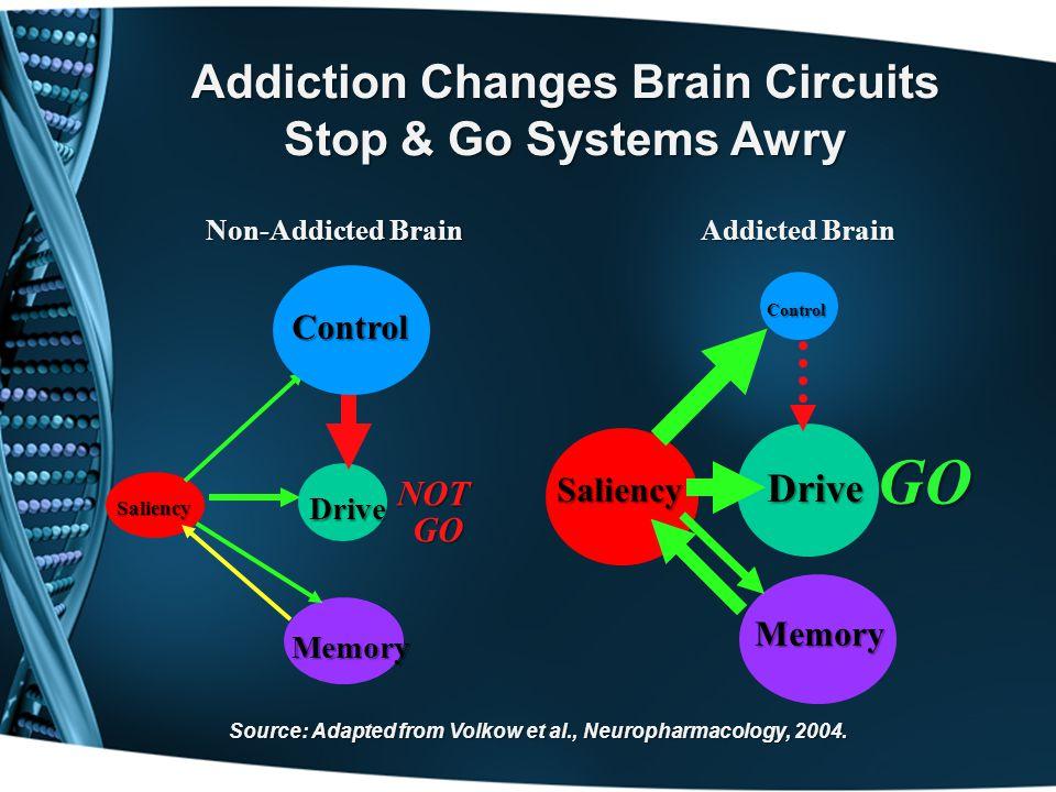 Addiction Changes Brain Circuits