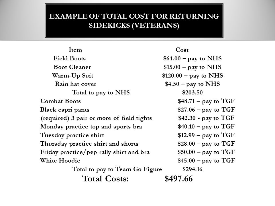 Example of Total cost for returning sidekicks (veterans)