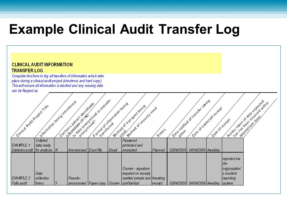 Example Clinical Audit Transfer Log