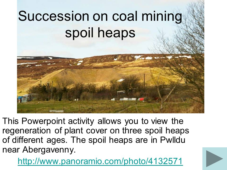 Succession on coal mining spoil heaps