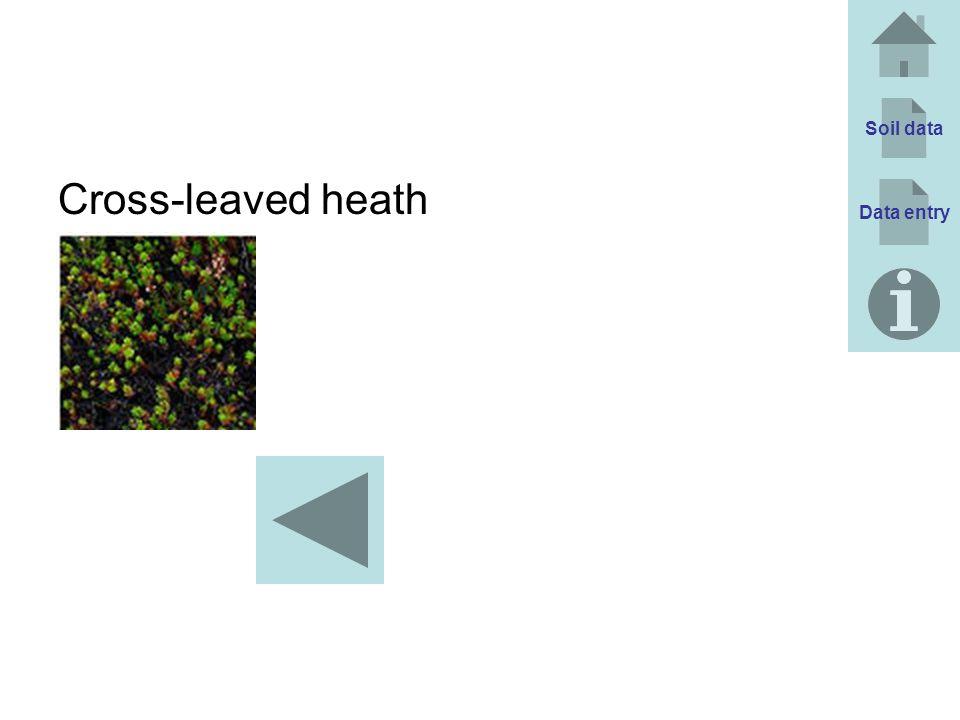 Soil data Cross-leaved heath Data entry