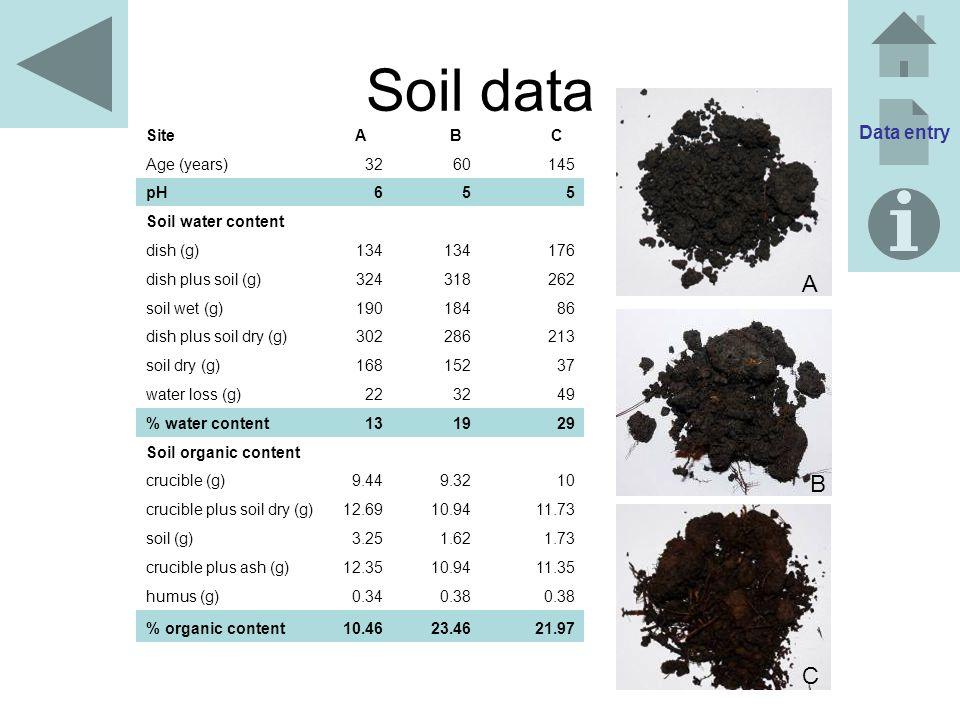 Soil data A B C Data entry Site A B C Age (years) 32 60 145 pH 6 5