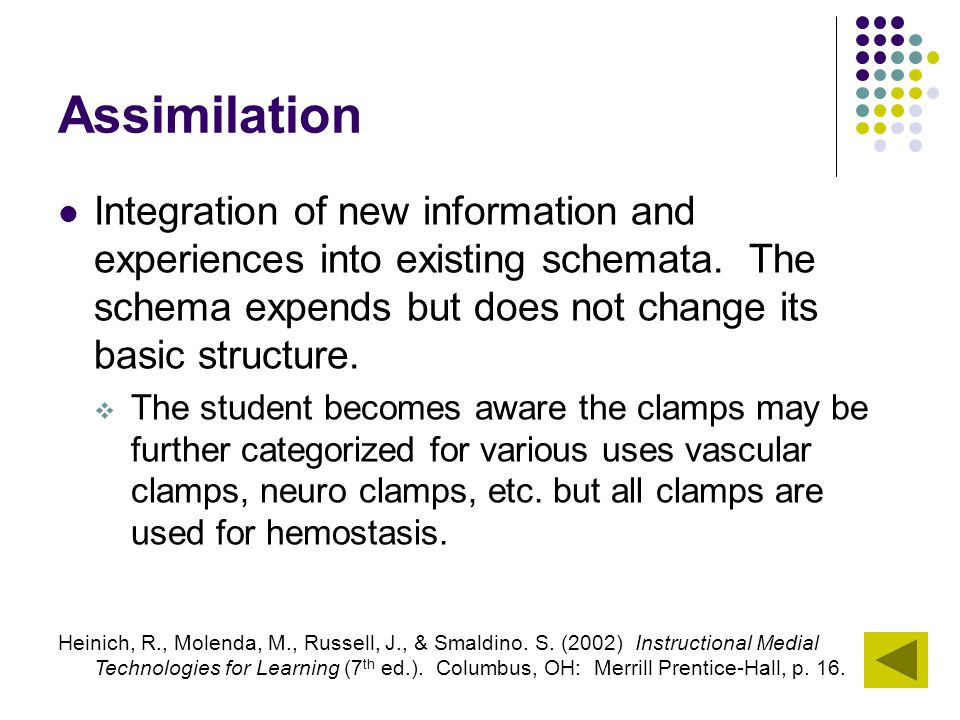 Assimilation Integration of new information and experiences into existing schemata. The schema expends but does not change its basic structure.