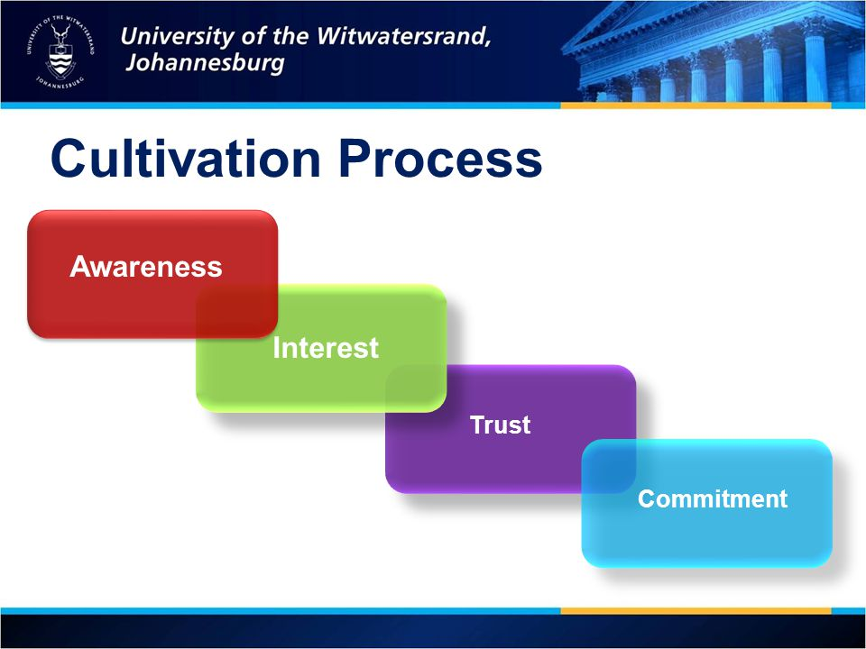 Cultivation Process Awareness Interest Trust Commitment 16