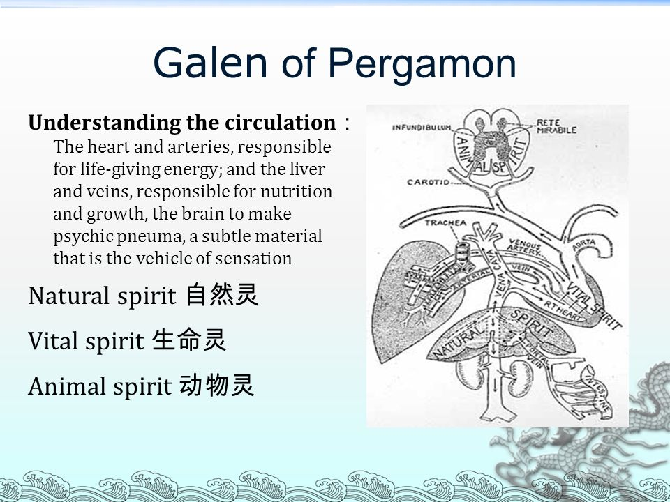 Galen of Pergamon Natural spirit 自然灵 Vital spirit 生命灵