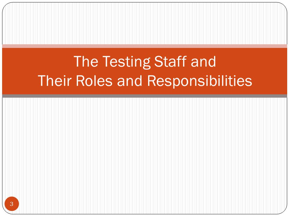 The Testing Staff and Their Roles and Responsibilities