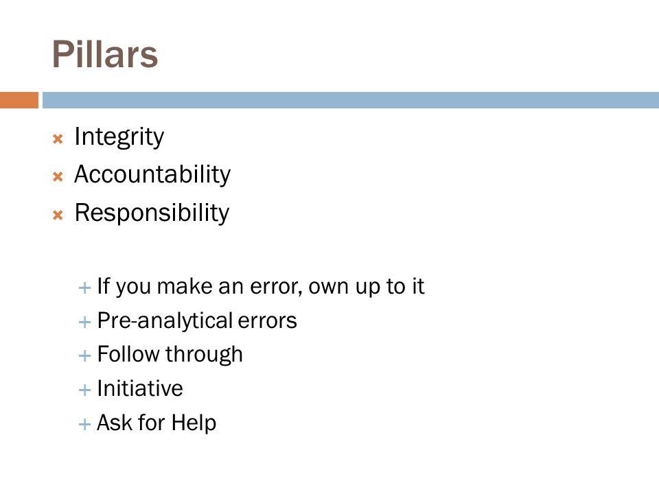 Pillars Integrity Accountability Responsibility