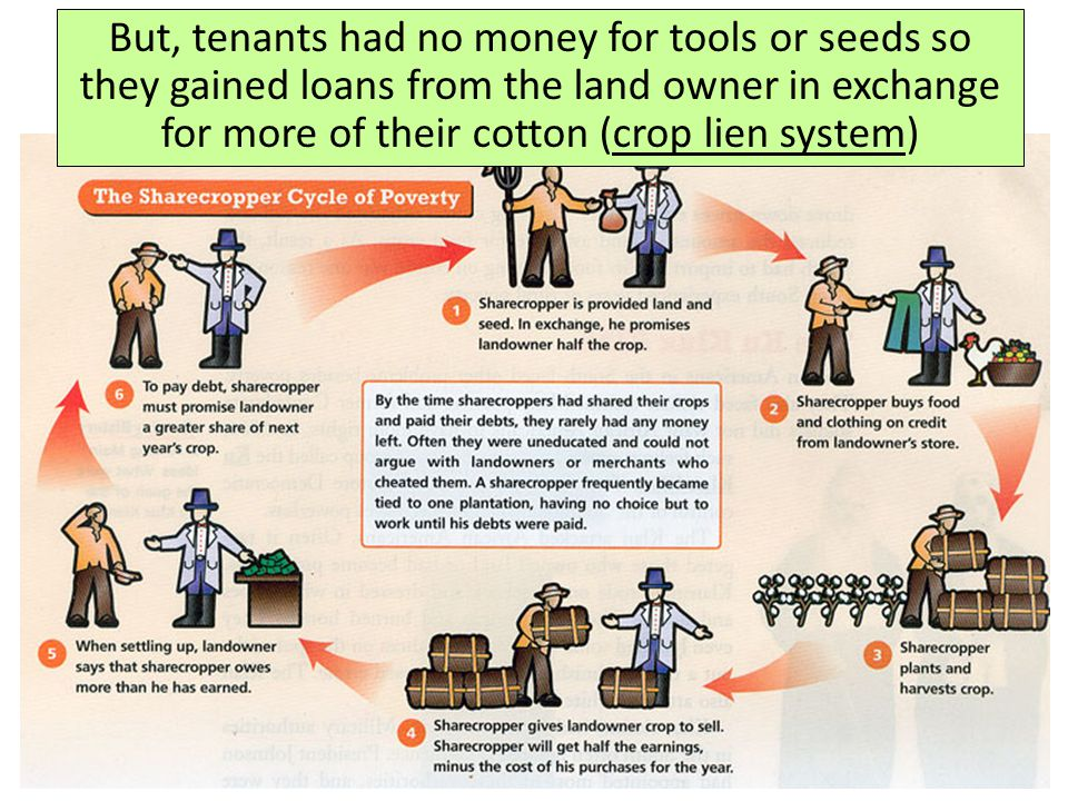 But, tenants had no money for tools or seeds so they gained loans from the land owner in exchange for more of their cotton (crop lien system)