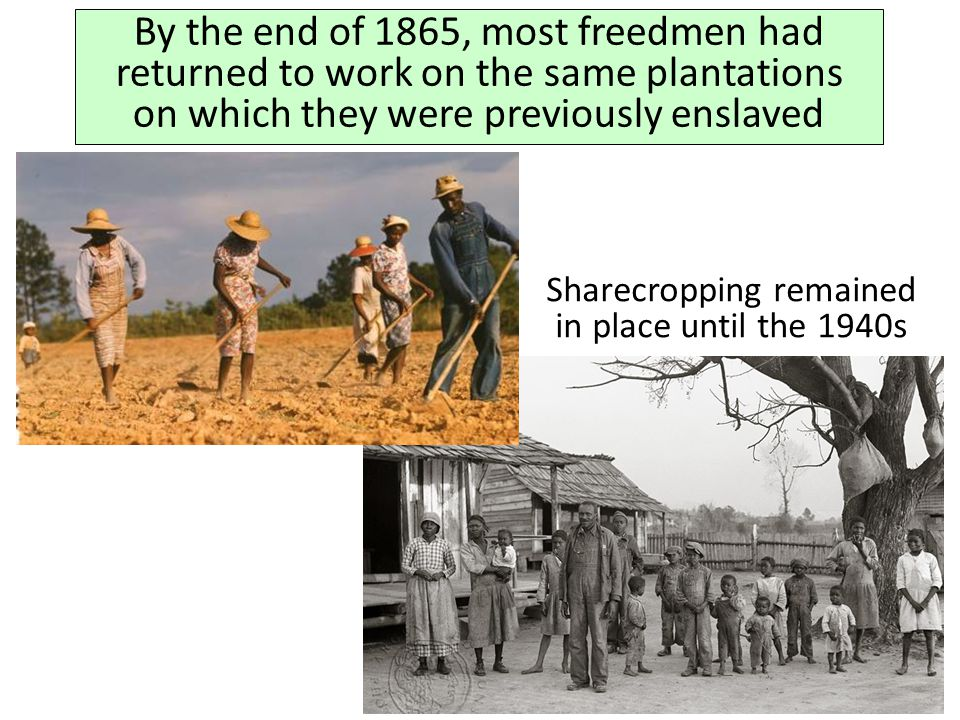 Sharecropping remained in place until the 1940s