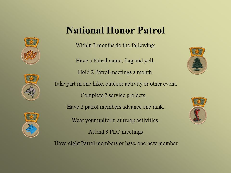 National Honor Patrol Within 3 months do the following: