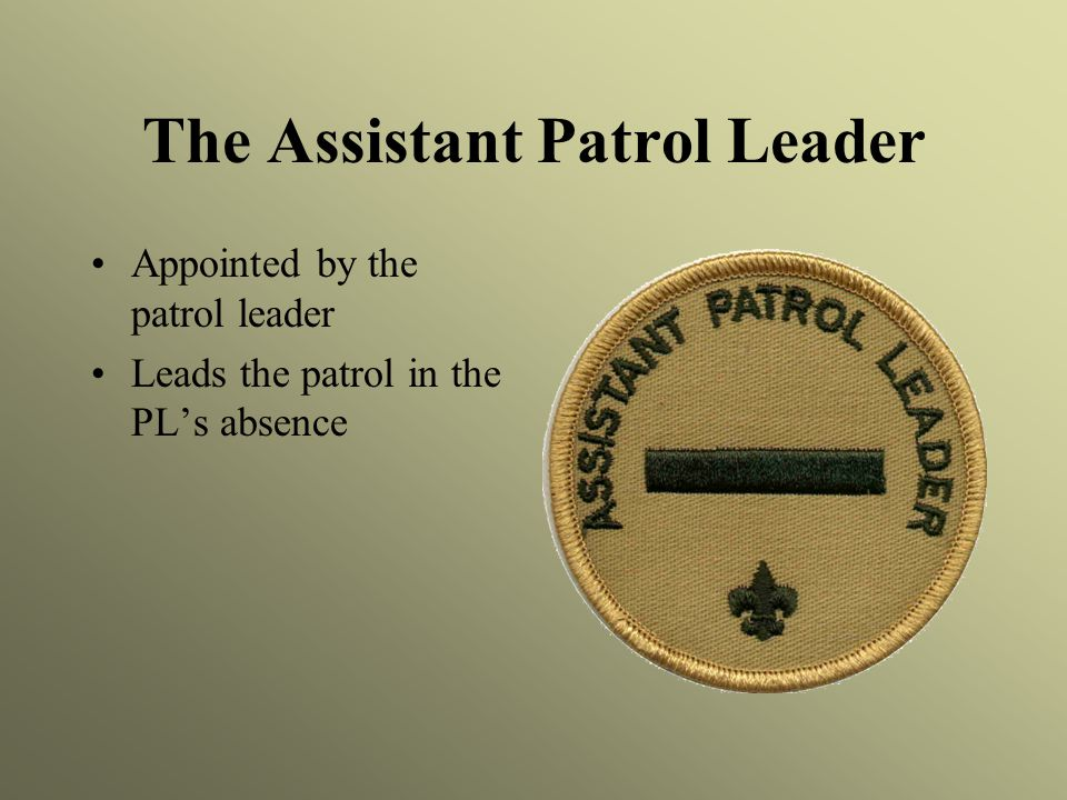 The Assistant Patrol Leader
