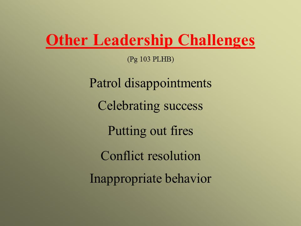 Other Leadership Challenges