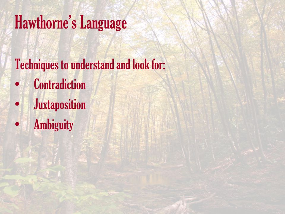 Hawthorne's Language Techniques to understand and look for: