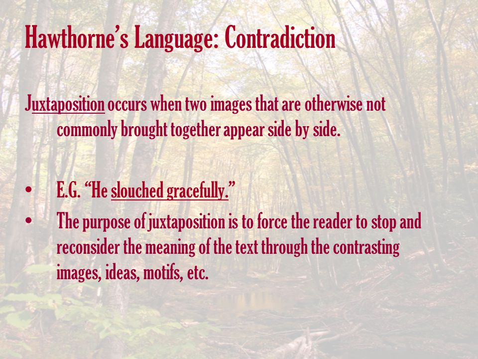 Hawthorne's Language: Contradiction