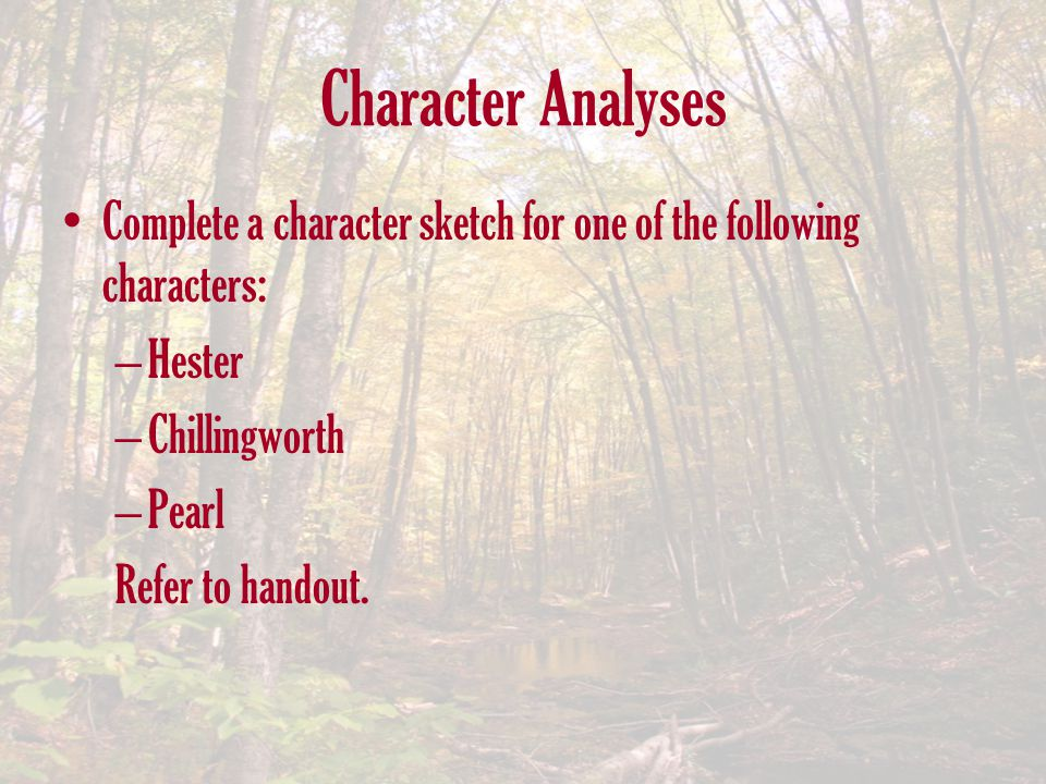 Character Analyses Complete a character sketch for one of the following characters: Hester. Chillingworth.