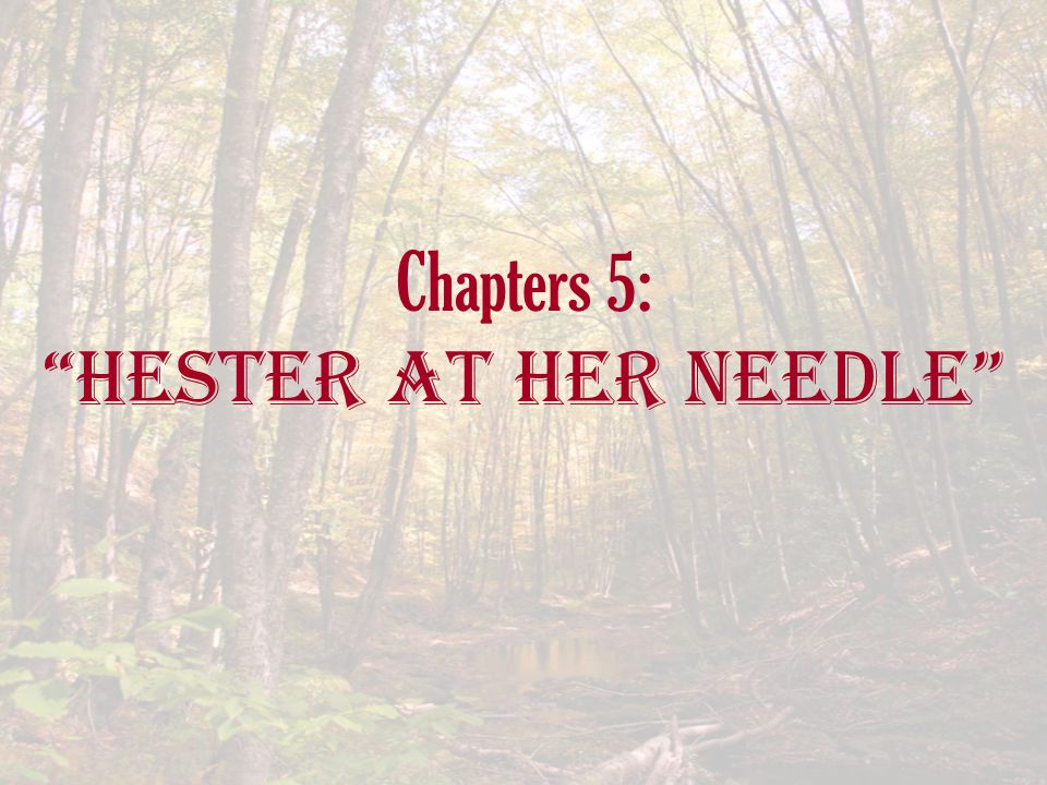 Chapters 5: Hester at her Needle