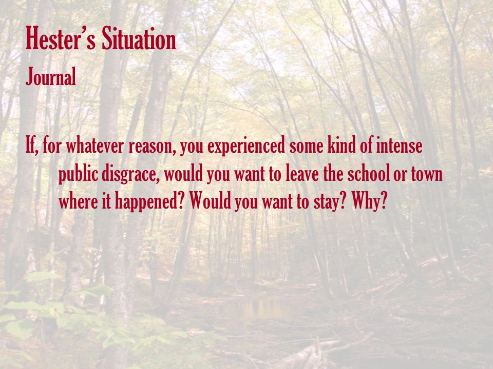 Hester's Situation Journal