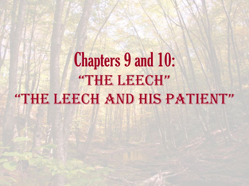 Chapters 9 and 10: The Leech The Leech and His Patient