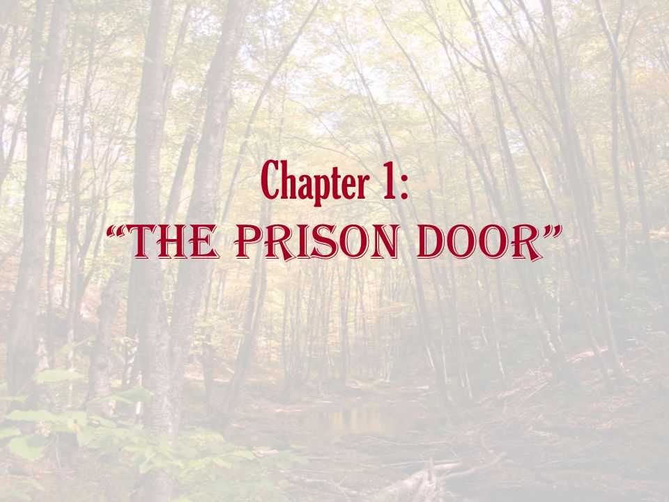 Chapter 1: The Prison Door