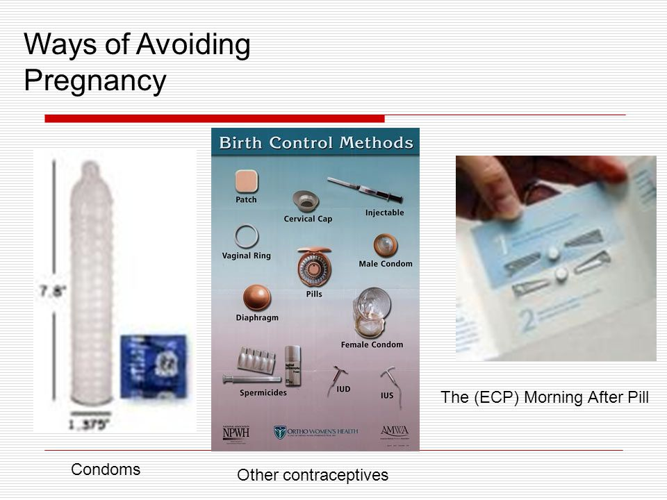 Ways of Avoiding Pregnancy