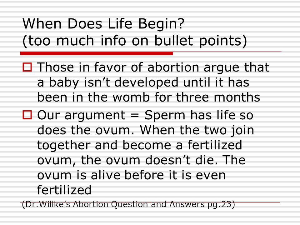 When Does Life Begin (too much info on bullet points)