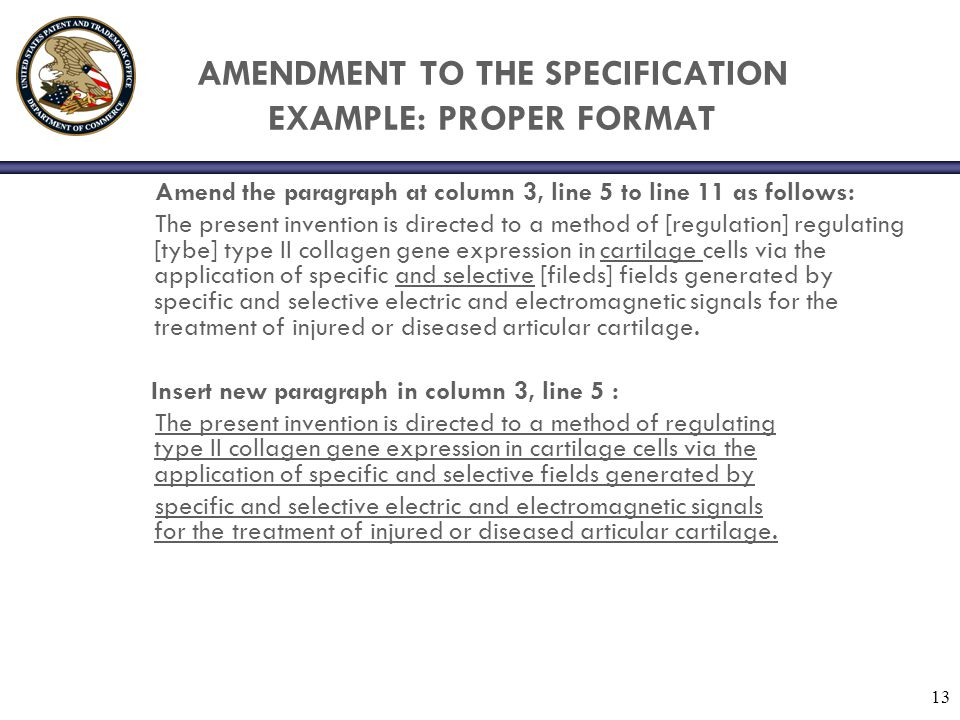 AMENDMENT TO THE SPECIFICATION EXAMPLE: PROPER FORMAT