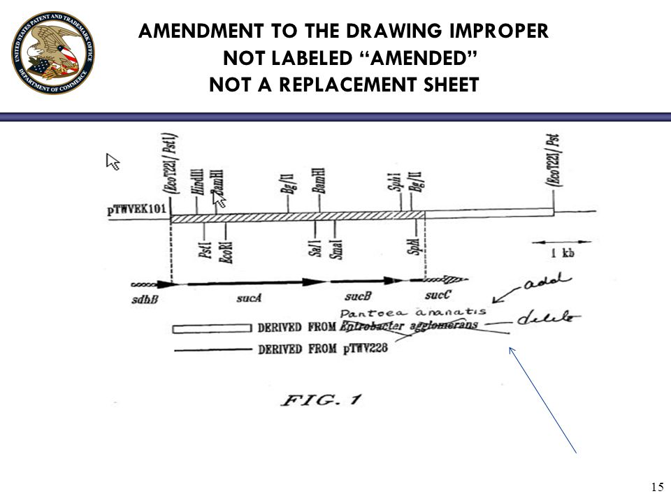 AMENDMENT TO THE DRAWING IMPROPER NOT LABELED AMENDED NOT A REPLACEMENT SHEET