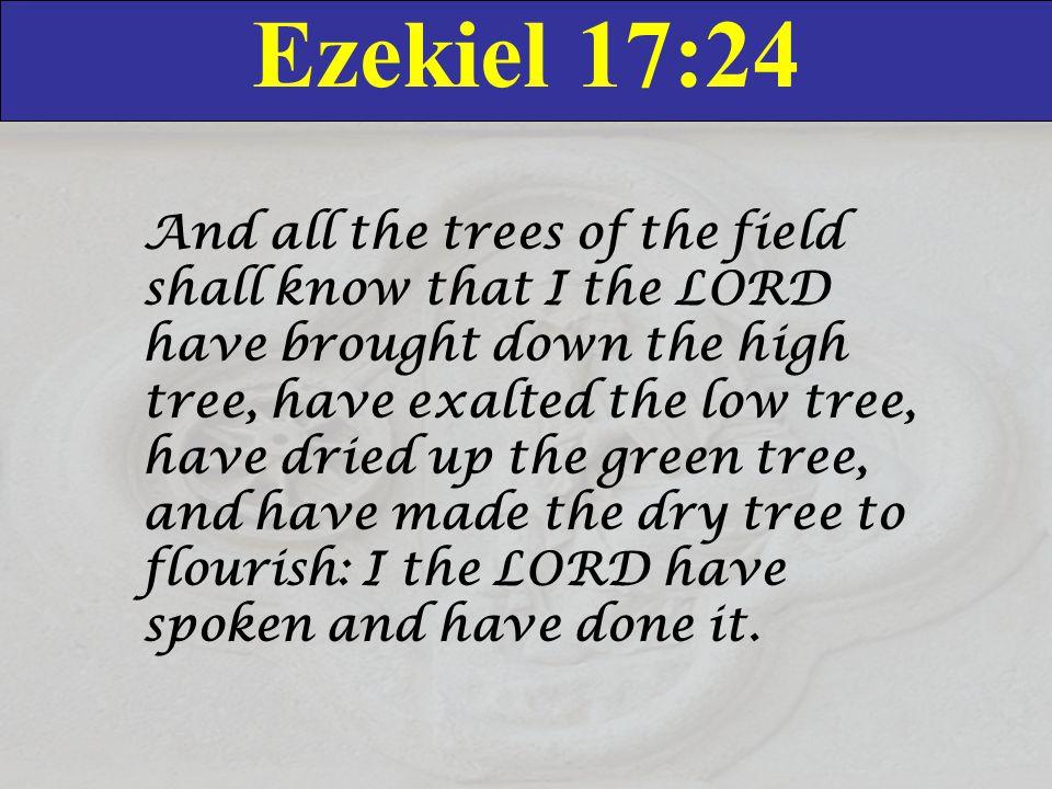 Ezekiel 17:24