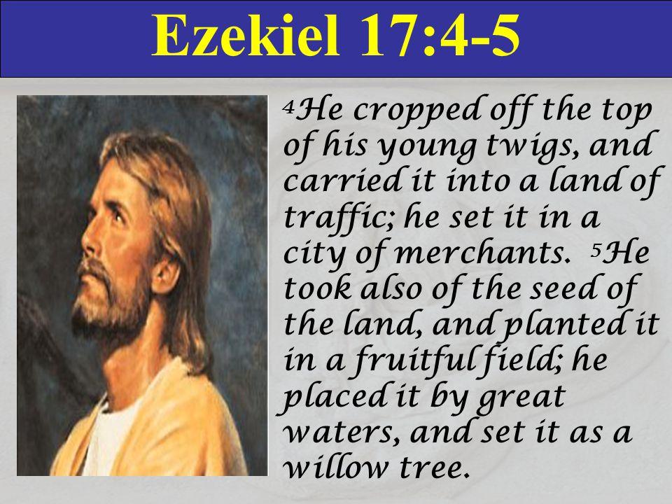 Ezekiel 17:4-5