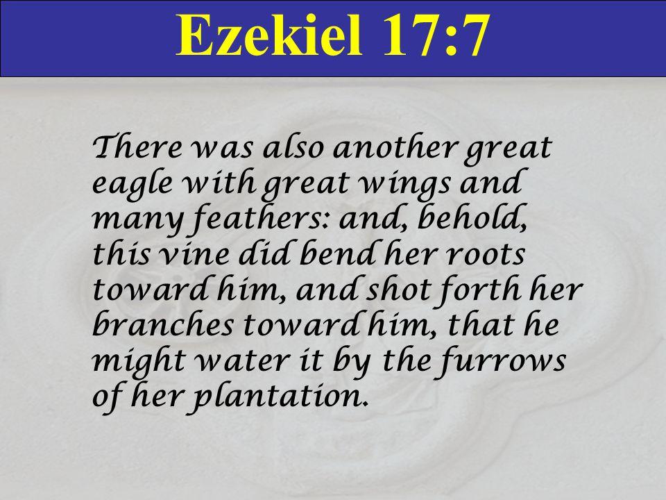 Ezekiel 17:7