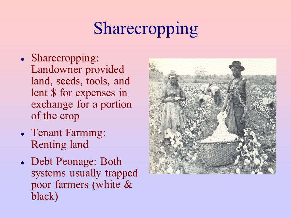 Sharecropping Sharecropping: Landowner provided land, seeds, tools, and lent $ for expenses in exchange for a portion of the crop.