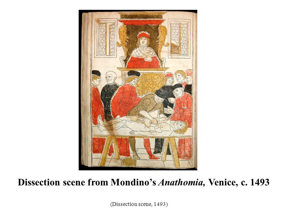 Dissection scene from Mondino's Anathomia, Venice, c. 1493