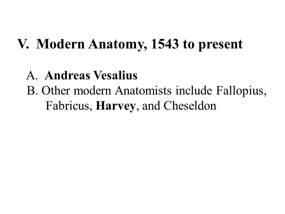 V. Modern Anatomy, 1543 to present