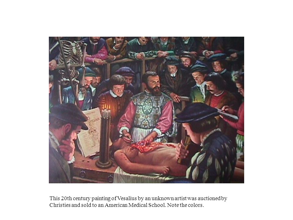 This 20th century painting of Vesalius by an unknown artist was auctioned by Christies and sold to an American Medical School. Note the colors.