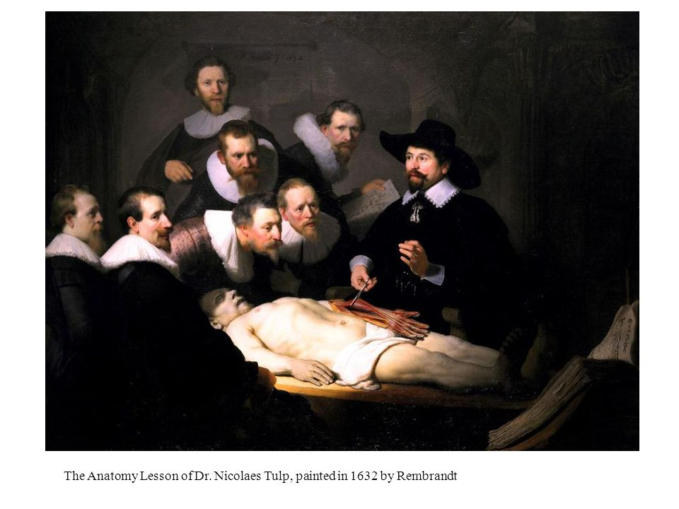 The Anatomy Lesson of Dr. Nicolaes Tulp, painted in 1632 by Rembrandt