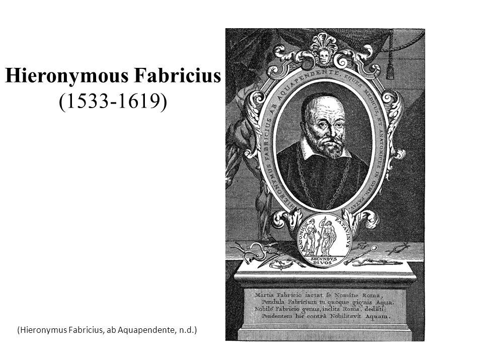 Hieronymous Fabricius