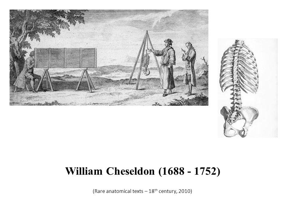 (Rare anatomical texts – 18th century, 2010)