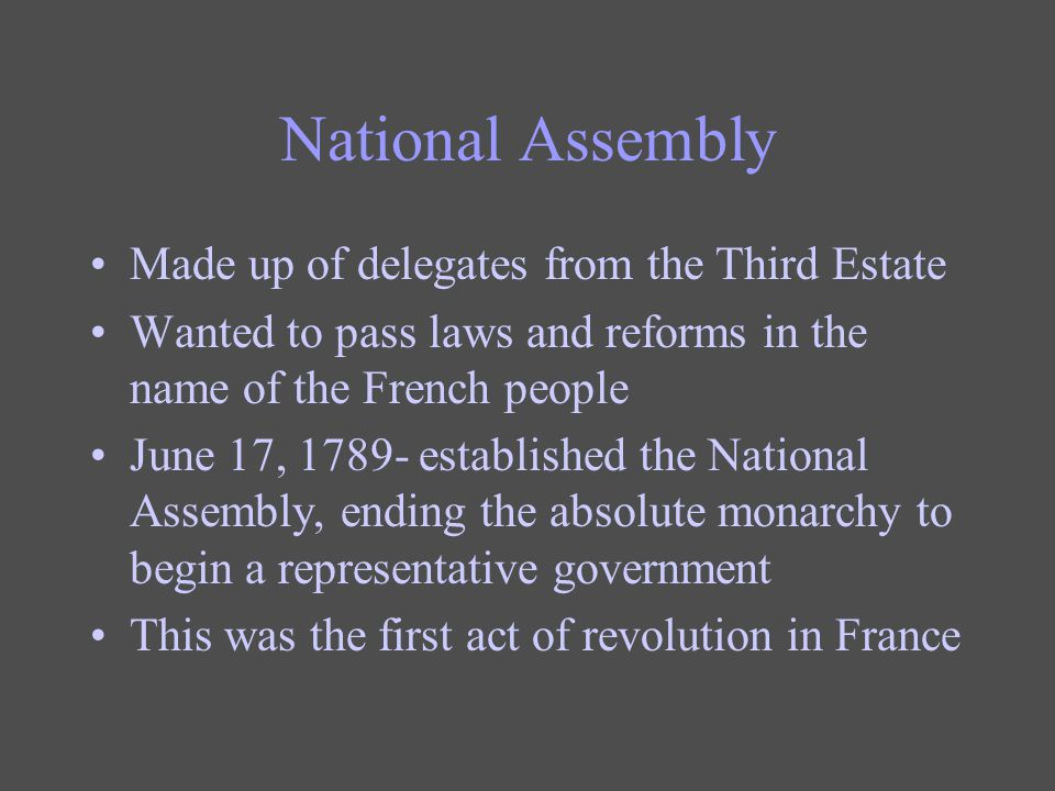 National Assembly Made up of delegates from the Third Estate