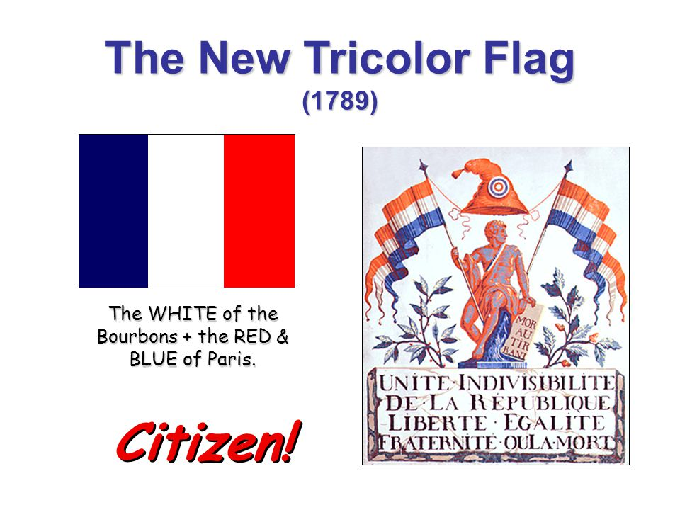 The New Tricolor Flag (1789)