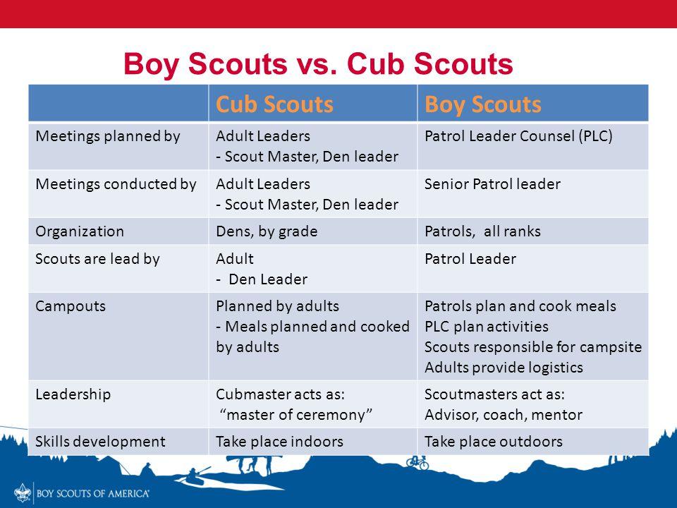 Boy Scouts vs. Cub Scouts
