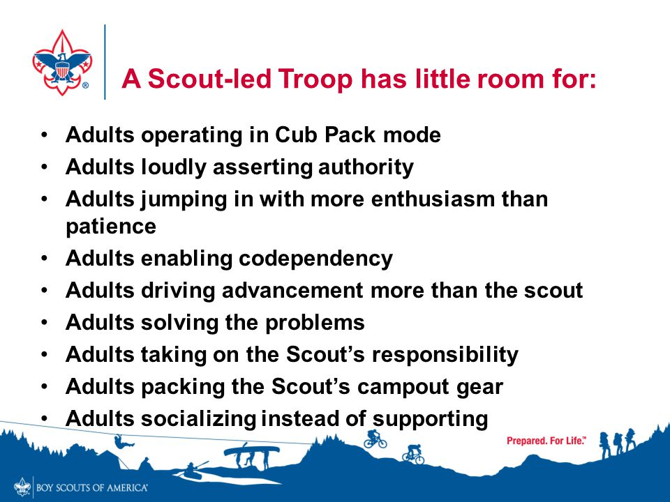 A Scout-led Troop has little room for: