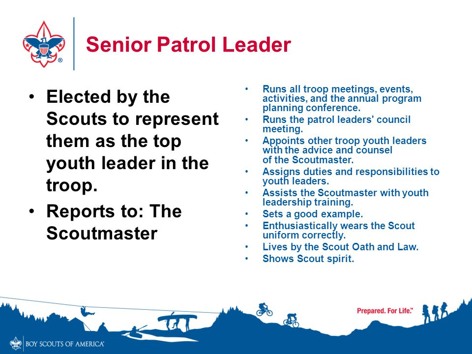 Senior Patrol Leader Elected by the Scouts to represent them as the top youth leader in the troop. Reports to: The Scoutmaster.