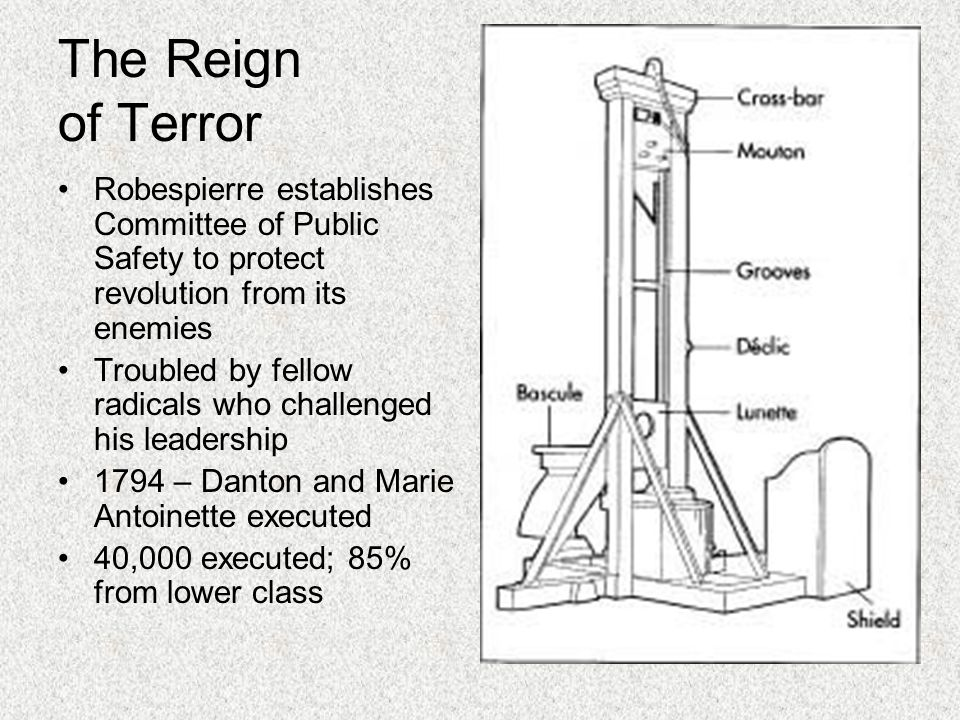 The Reign of Terror Robespierre establishes Committee of Public Safety to protect revolution from its enemies.