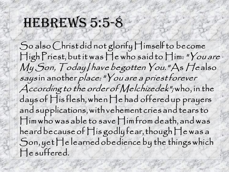 Hebrews 5:5-8