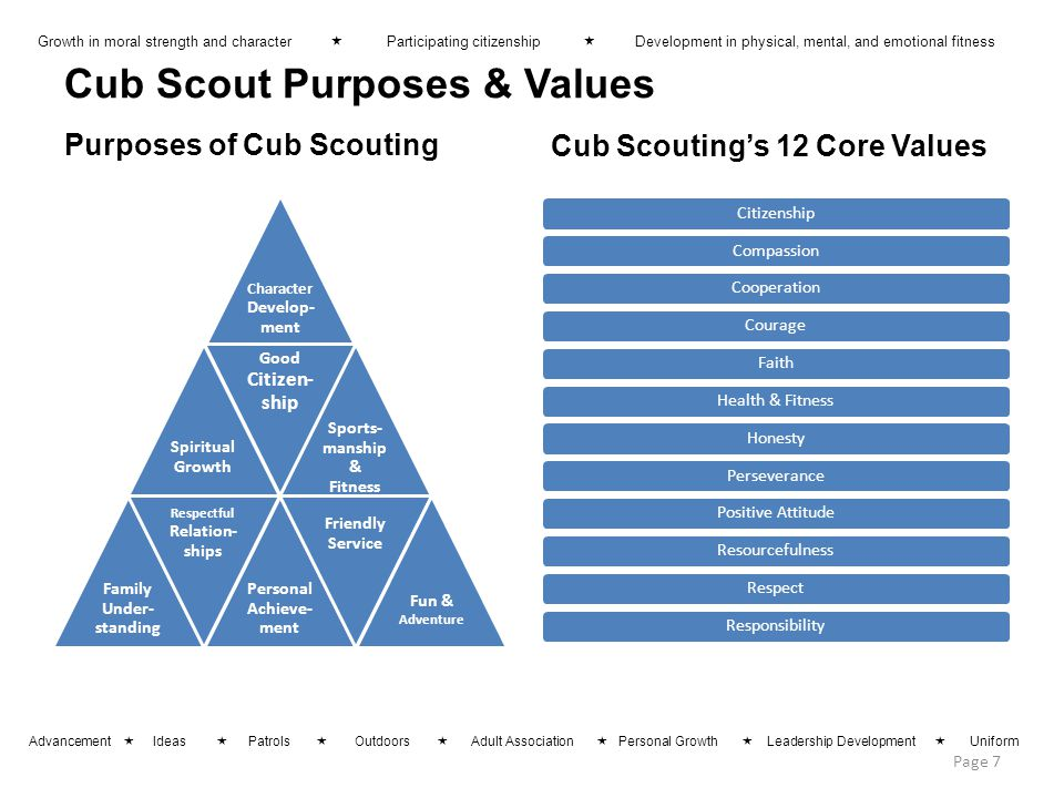 Cub Scout Purposes & Values