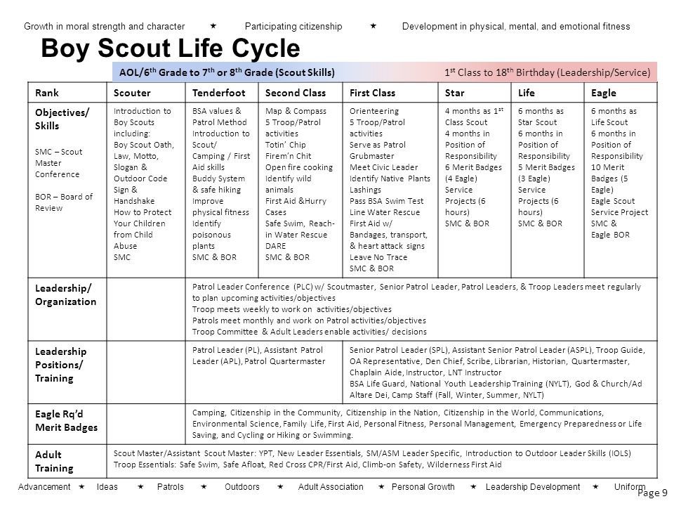 Boy Scout Life Cycle AOL/6th Grade to 7th or 8th Grade (Scout Skills)